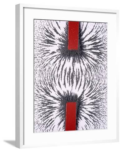 Magnetic Attraction-Cordelia Molloy-Framed Art Print