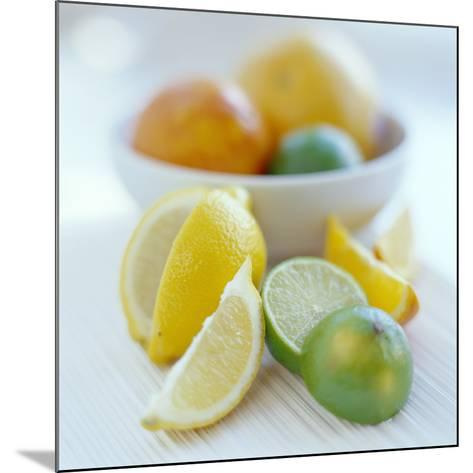 Citrus Fruits-David Munns-Mounted Photographic Print