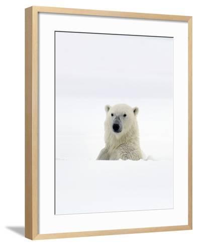 Polar Bear-Louise Murray-Framed Art Print