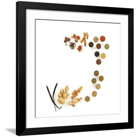 Assortment of Spices-David Munns-Framed Art Print