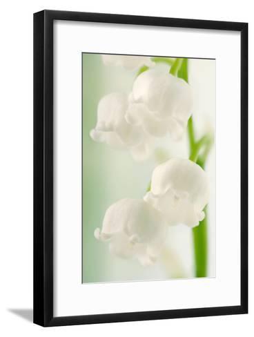 Lily of the Valley (Convallaria Majalis)-Maria Mosolova-Framed Art Print