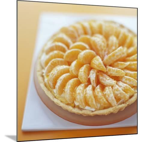 Mandarin Tart-David Munns-Mounted Photographic Print