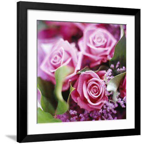 Roses-David Munns-Framed Art Print