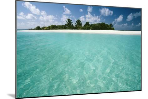 Tropical Beach-Matthew Oldfield-Mounted Photographic Print