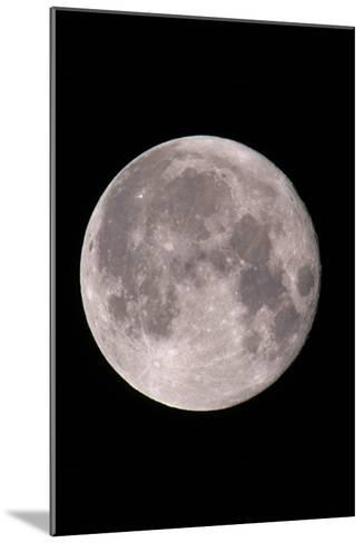 Full Moon In the Night Sky-David Nunuk-Mounted Photographic Print