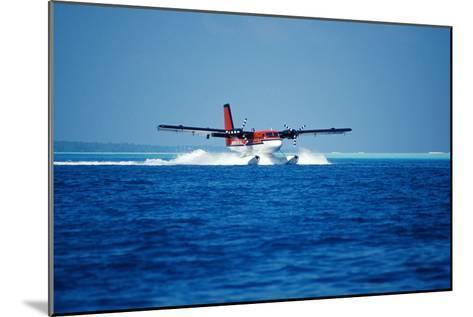 Seaplane Landing-Matthew Oldfield-Mounted Photographic Print