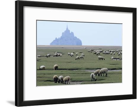 Sheep Grazing-David Nunuk-Framed Art Print