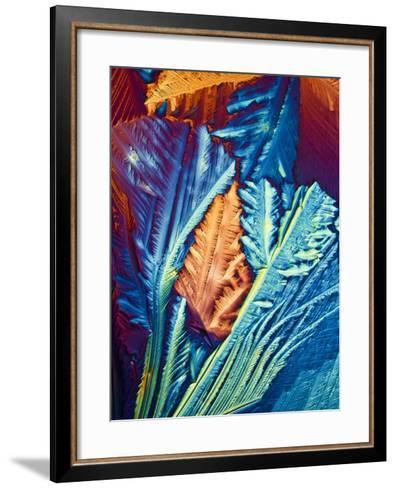 Oestradiol, Female Sex Hormone-PASIEKA-Framed Art Print