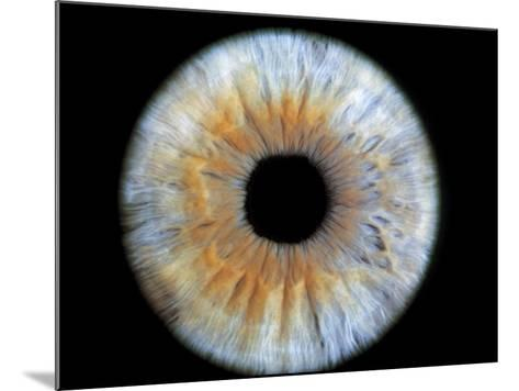Computer-enhanced Blue-grey Iris of the Eye-David Parker-Mounted Photographic Print