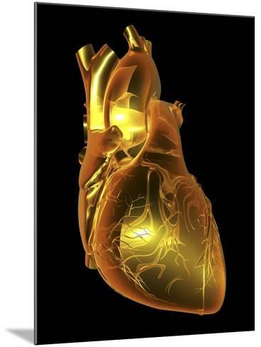 Heart with Coronary Vessels-PASIEKA-Mounted Photographic Print