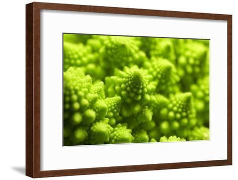 Romanesco Cauliflower Head-PASIEKA-Framed Art Print