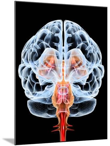 Brain, Artwork-PASIEKA-Mounted Photographic Print