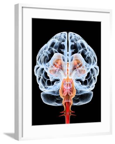 Brain, Artwork-PASIEKA-Framed Art Print