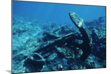 Anchor-Alexis Rosenfeld-Mounted Photographic Print