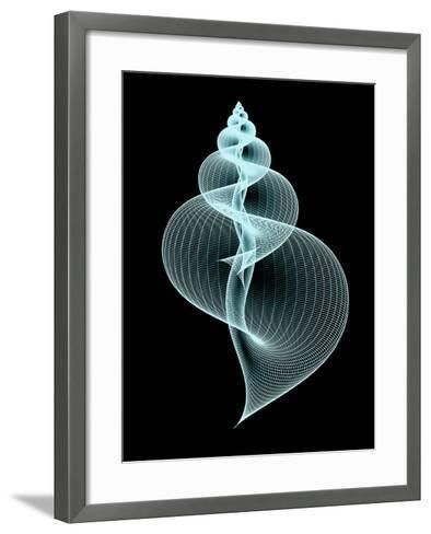 Snail Shell, Artwork-PASIEKA-Framed Art Print