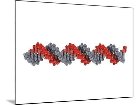 B-DNA Molecule-Visual Science-Mounted Photographic Print