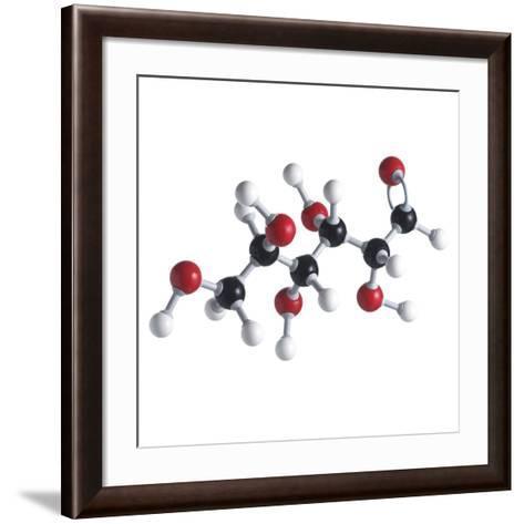 Glucose Sugar Molecule-Science Photo Library-Framed Art Print