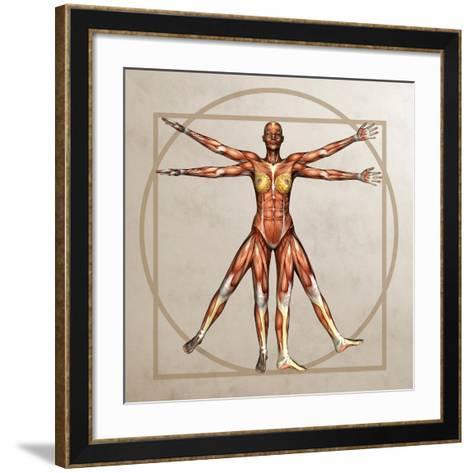 Female Musculature, Artwork-Friedrich Saurer-Framed Art Print