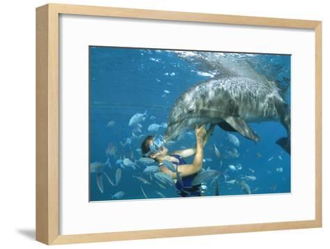 Dolphin And Swimmer-Alexis Rosenfeld-Framed Art Print
