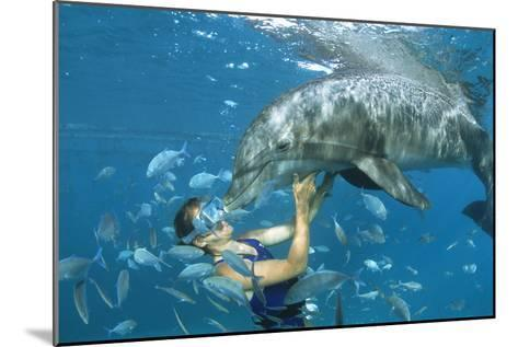 Dolphin And Swimmer-Alexis Rosenfeld-Mounted Photographic Print