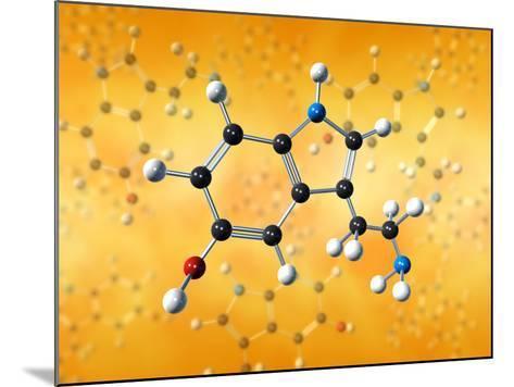 Serotonin Neurotransmitter Molecule-David Mack-Mounted Photographic Print