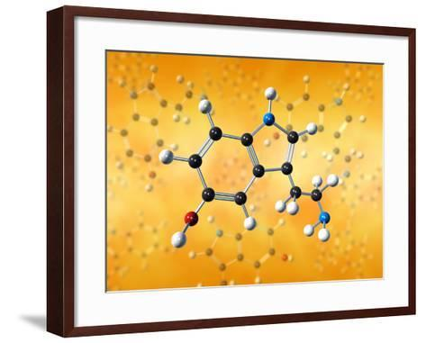 Serotonin Neurotransmitter Molecule-David Mack-Framed Art Print