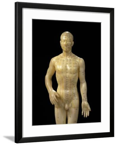 Male Dummy Showing Acupuncture Meridians & Points-Damien Lovegrove-Framed Art Print