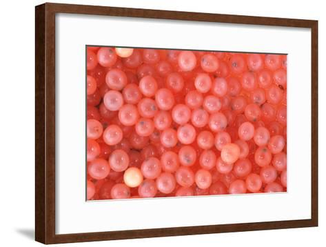 Salmon Eggs-Alan Sirulnikoff-Framed Art Print