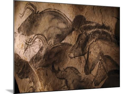 Stone-age Cave Paintings, Chauvet, France-Javier Trueba-Mounted Photographic Print