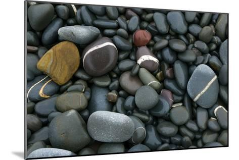 Pebbles on a Beach-Dr. Keith Wheeler-Mounted Photographic Print