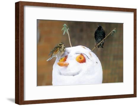 Birds Perched on a Snowman-Dr. Keith Wheeler-Framed Art Print
