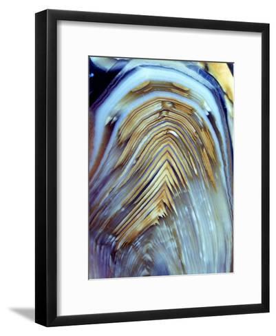 Polished Pebble of a Fossil Fern Stem-Dirk Wiersma-Framed Art Print