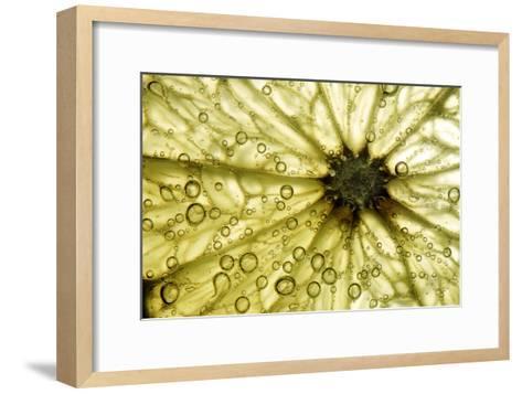 Grapefruit Slice-Linda Wright-Framed Art Print
