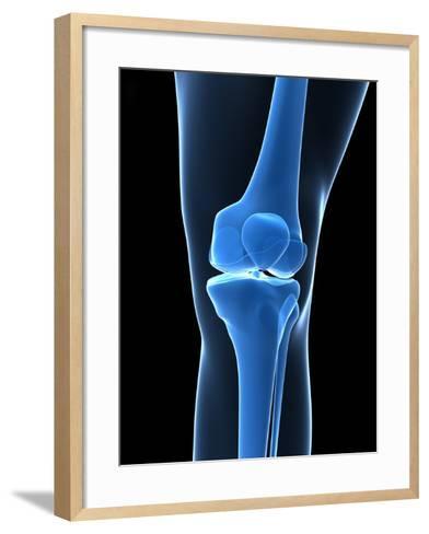 Knee Bones, Artwork-SCIEPRO-Framed Art Print