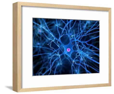 Nerve Cell, Artwork-SCIEPRO-Framed Art Print