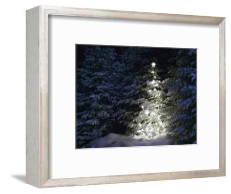 Illuminated Christmas Tree in Snow-Larry Williams-Framed Art Print