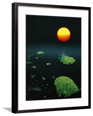Sun over black lava, Iceland-W^ Krecichwost-Framed Art Print