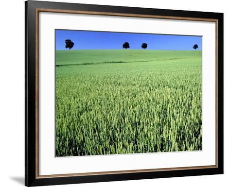 Wheat field-Frank Krahmer-Framed Art Print