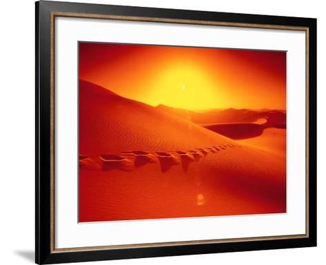 Footprints in desert-Frank Krahmer-Framed Art Print