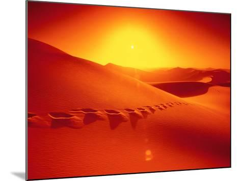 Footprints in desert-Frank Krahmer-Mounted Photographic Print