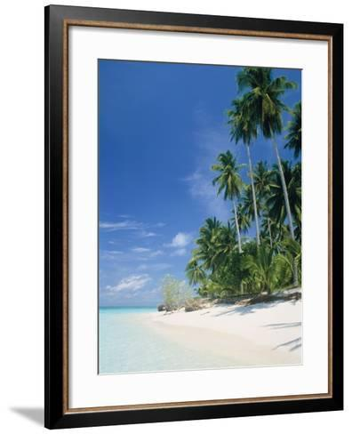 Beach with palms and clear sea, Malaysia, Mabul Island-Sergio Pitamitz-Framed Art Print