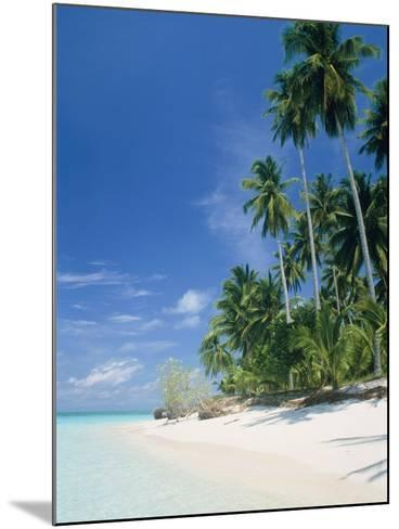 Beach with palms and clear sea, Malaysia, Mabul Island-Sergio Pitamitz-Mounted Photographic Print