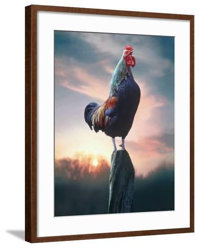 Rooster Crowing at Dawn-G^ Baden-Framed Art Print