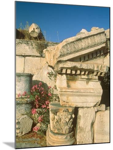 Ruins of Elefsina, Attica, Greece-Rainer Hackenberg-Mounted Photographic Print