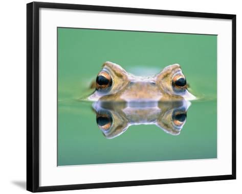 Frog in the water-Herbert Kehrer-Framed Art Print