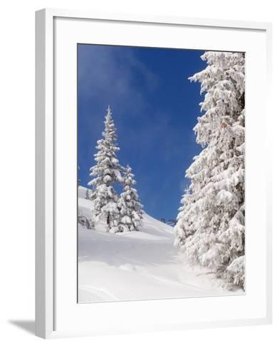 Snowcovered landscape--Framed Art Print
