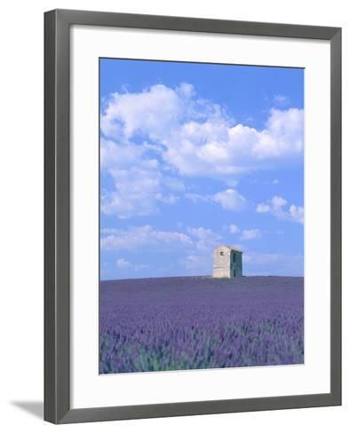 Blooming lavender and stone house in France-Herbert Kehrer-Framed Art Print