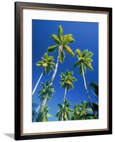 Palm trees, Seychelles, Africa-Frank Krahmer-Framed Art Print