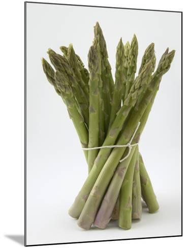 Bunch of Asparagus--Mounted Photographic Print