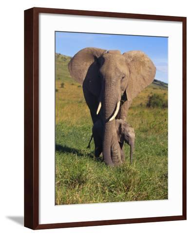 African Elephant with Calf in Grass--Framed Art Print